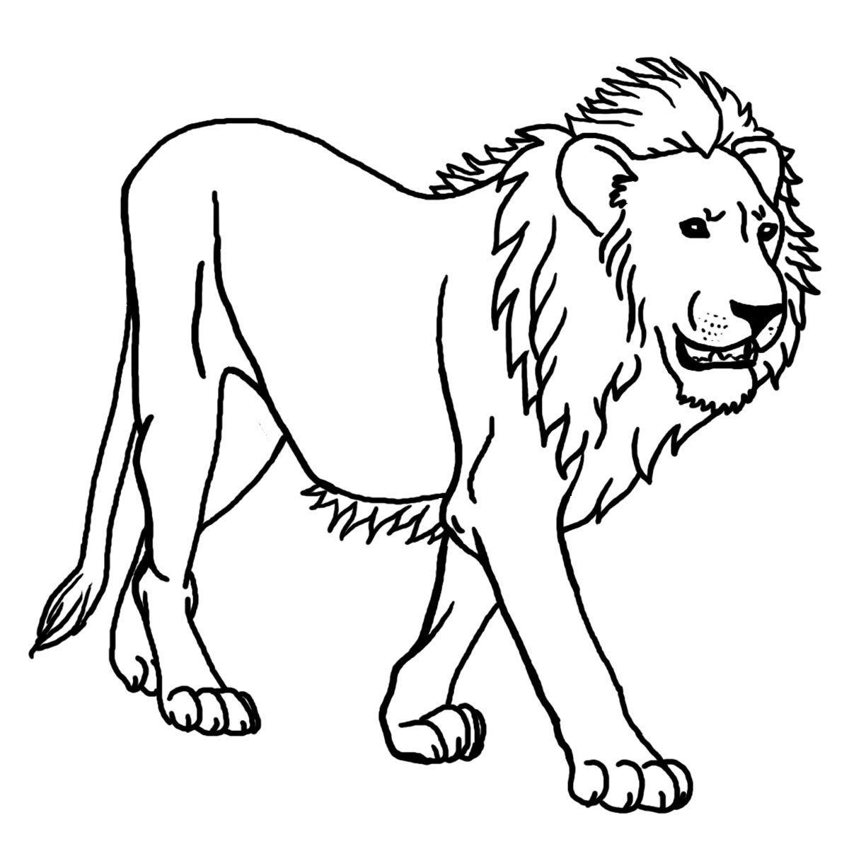 León salvaje para pintar para colorear