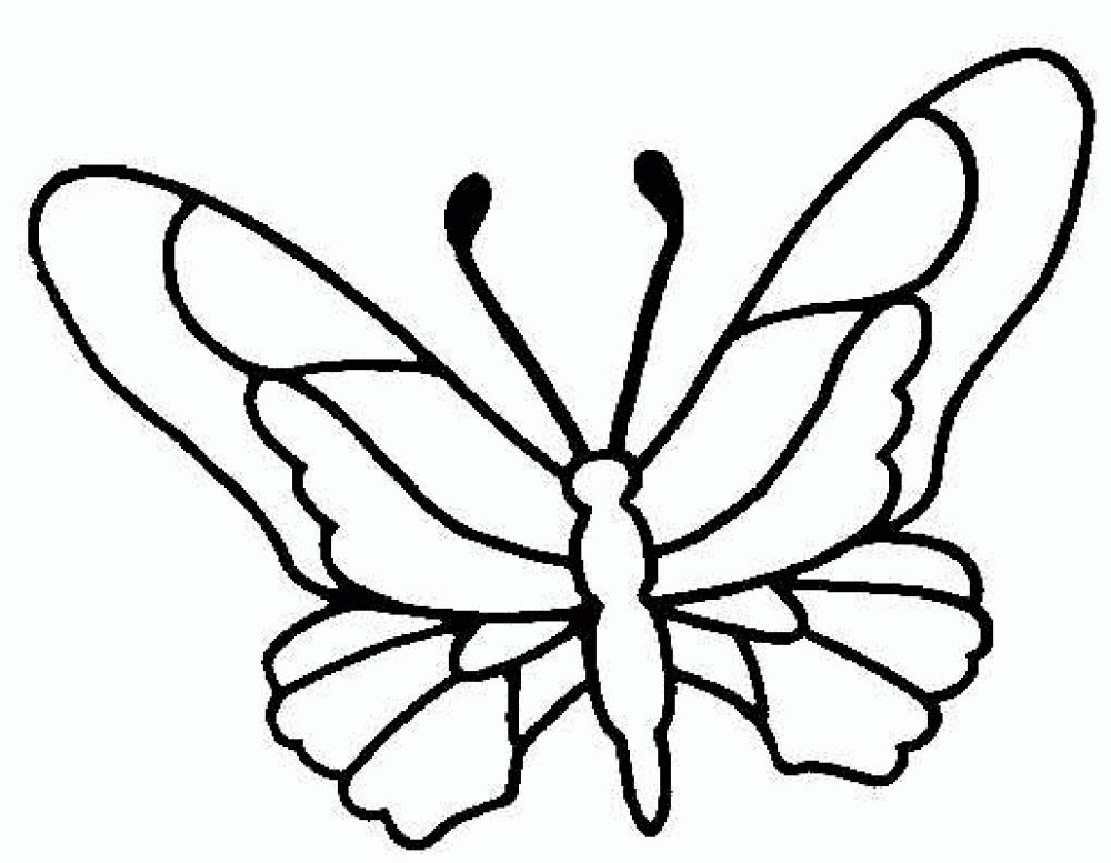 dibujos de mariposas pintadas para imprimir