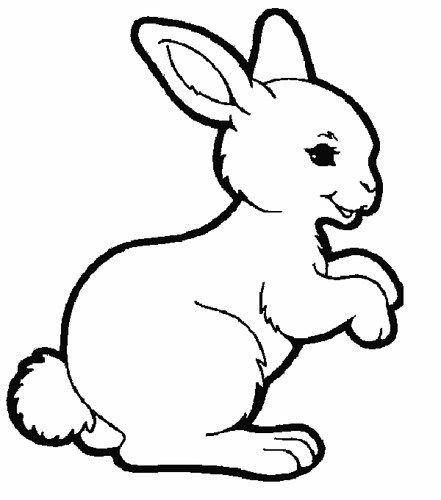 Dibujos de Conejos para Colorear e Imprimir