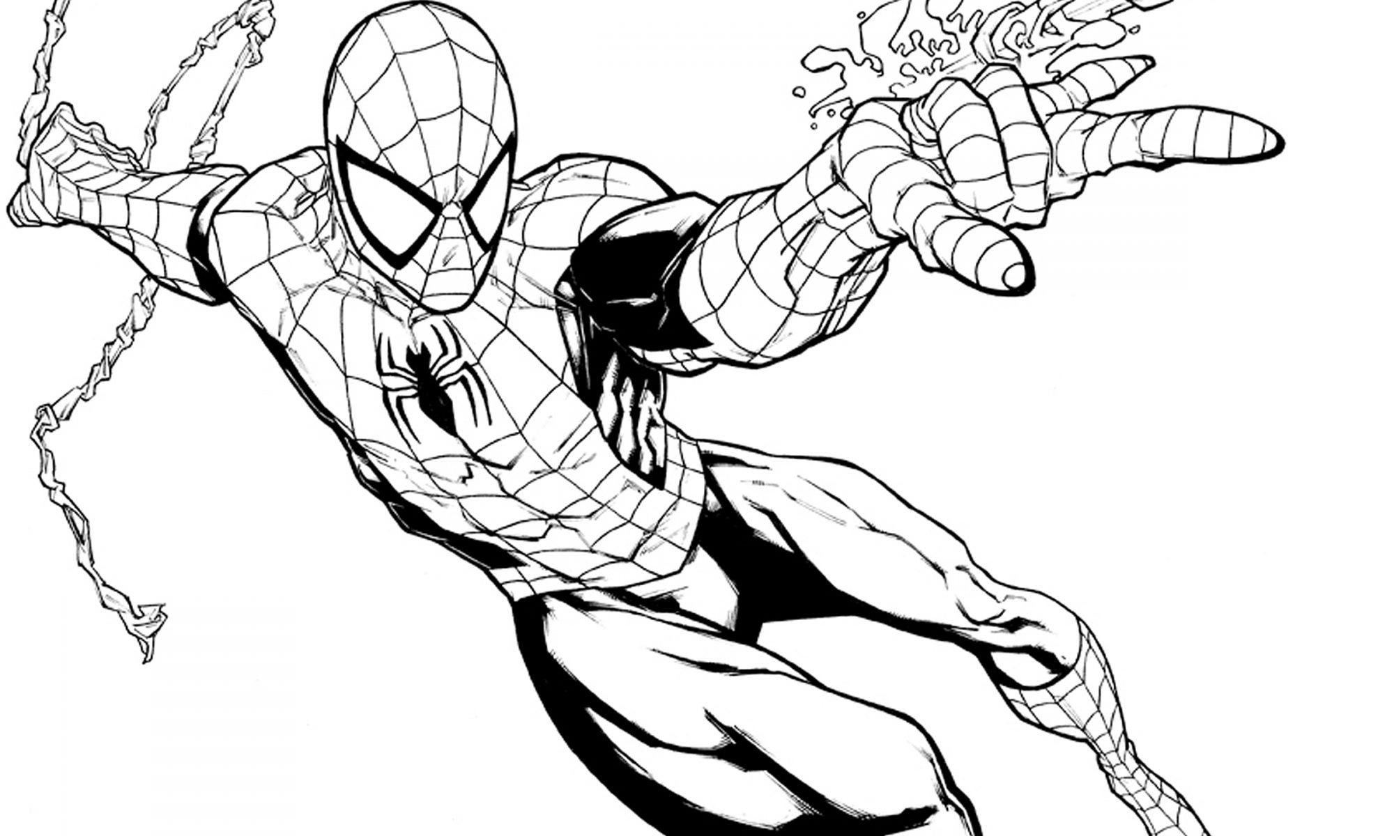 Spiderman Para Colorear Para Niños Dibujos Para Colorear