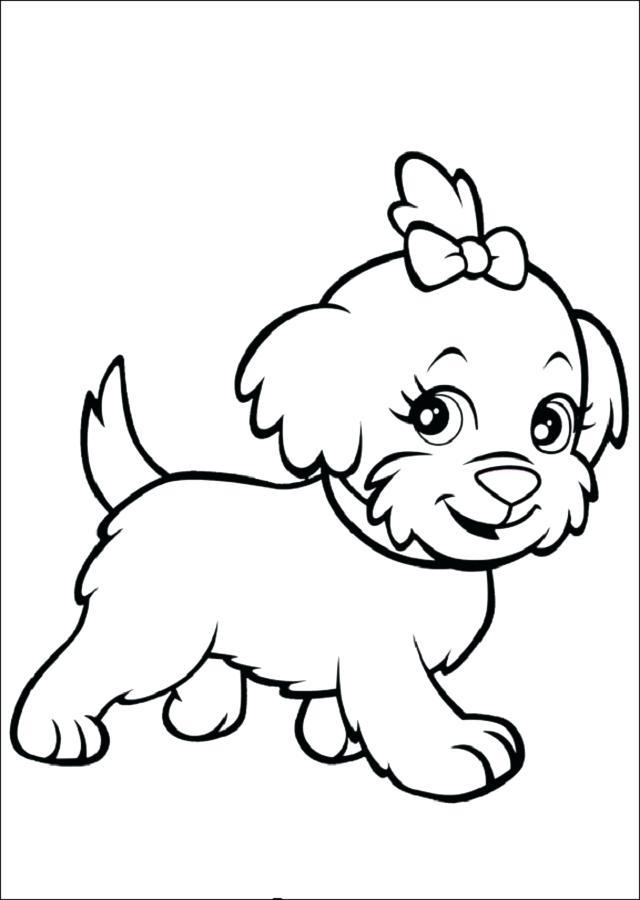 Pagina Para Colorear De Perro Para Dibujos Para Pintar De Perros Chihuahua