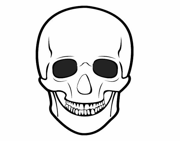 Dibujo de Cráneo humano pintado