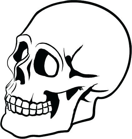 Craneo Dibujo Anatomia Dibujos Para Colorear Coloreartvcom