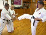 Dibujos De Karate Para Colorear