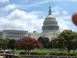 Visitar Washington Este Verano: Lugares Para Visitar